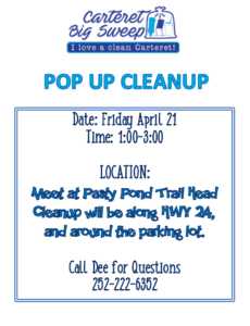 Pop Up Cleanup poster