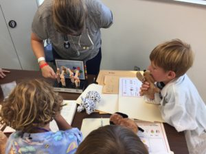 Veterinarian for a Day Camp