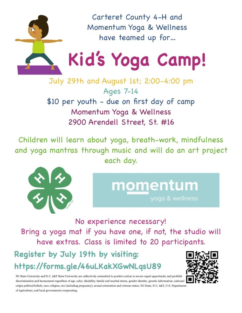 Kid's Yoga Camp Flyer - July 29 and August 1; 2:00-4:00 p.m. at Momentum Yoga & Wellness