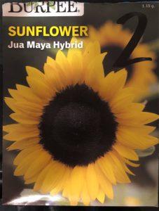 Jua Maya Hybrid Seed Pack - Front