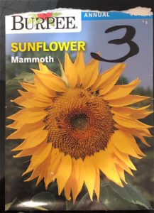 Mammoth Seed Pack - Front