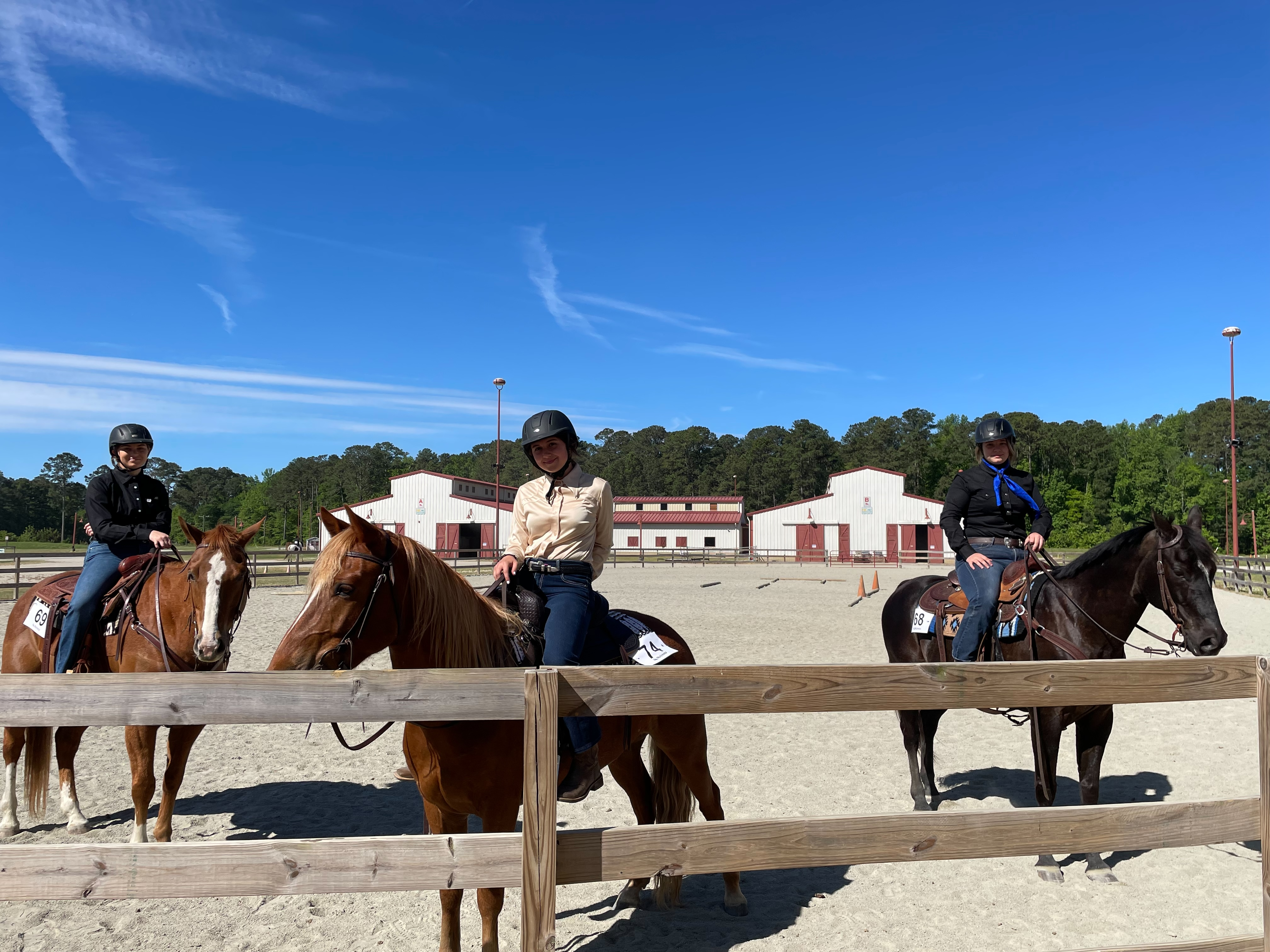 Riders and Horses
